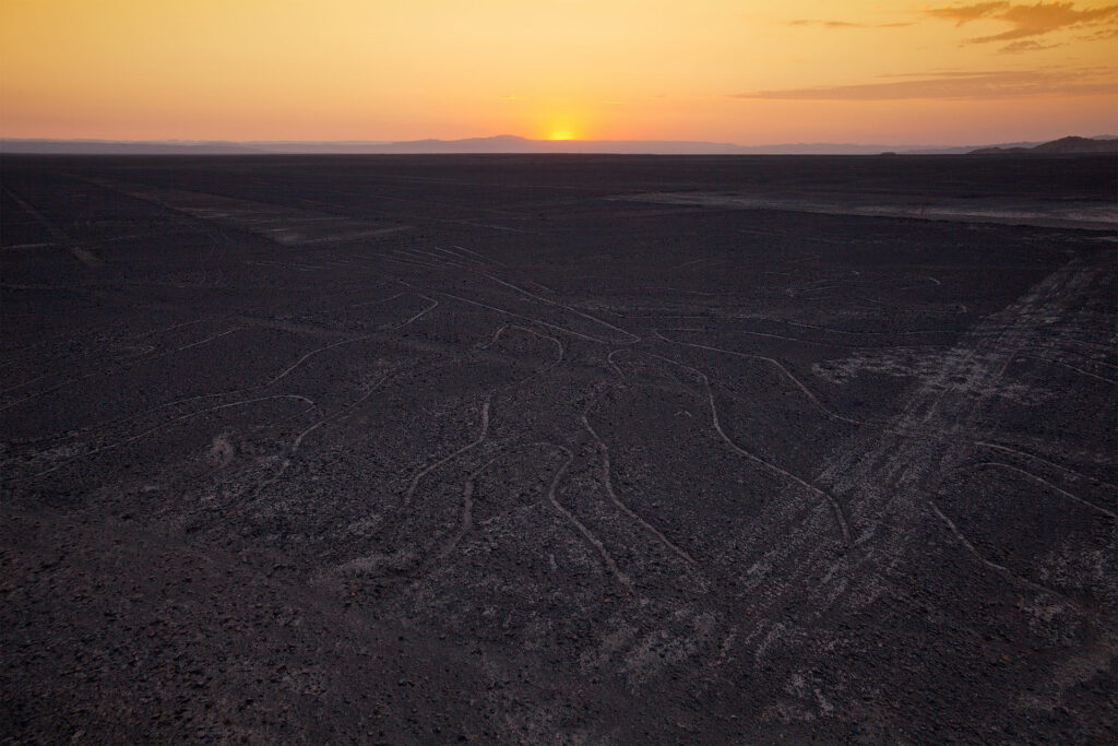 Nazca lines, tree (seen from the observation tower). Image Credit: Wikimedia Commons