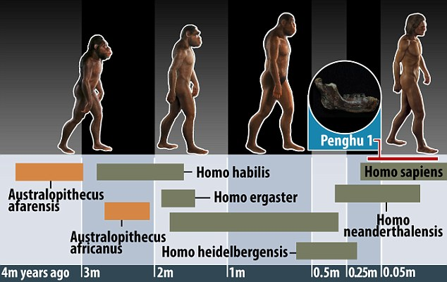 A New Species Of Ancient Man Discovered