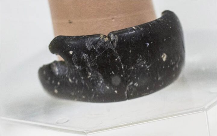 Researchers discover a 40.000 year old bracelet made by an extinct human species