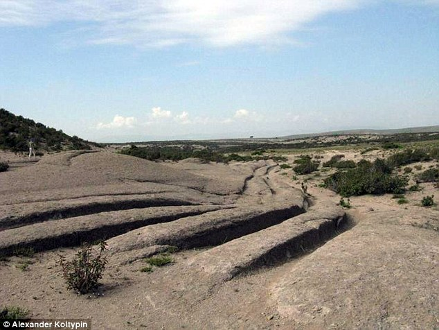 According to Dr Koltypin, these tracers were left behind by vehicles 14 million years ago