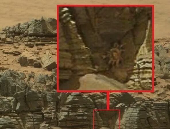 "Did Curiosity snap an image of a mysterious ""creature"" on Mars?"