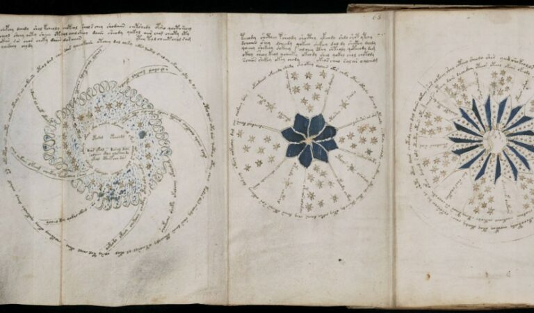 The Voynich Manuscript: Memoirs of a Stranded Alien?