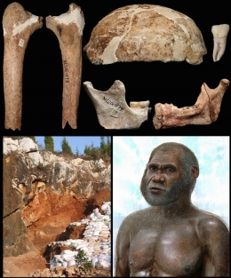 Human remains from the Red Deer Cave people (upper left, newly described thigh bone; upper right, skull bones and tooth), the Maludong fossil site (bottom left) and an artist's reconstruction of a Red Deer Cave man. Credit: Darren Curnoe, Ji Xueping & Peter Schouten.