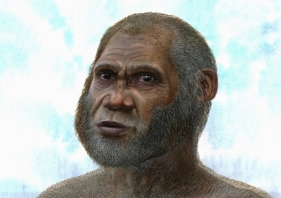 A bone fragment points to a mysterious and unknown species of humans according to new research