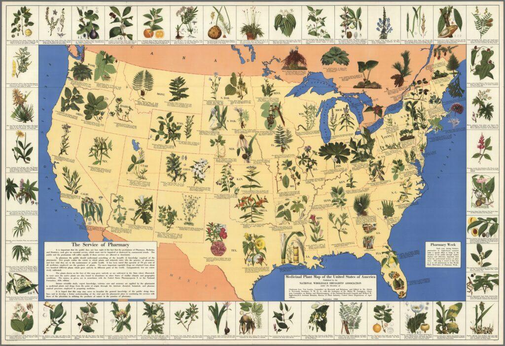 Ancient Medicine Map