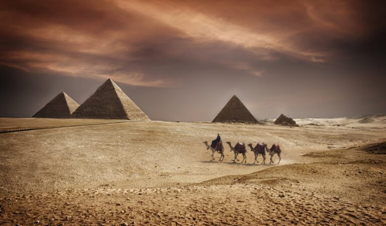 Does this discovery prove ancient Egyptians traveled to the Americas 3000 years ago?