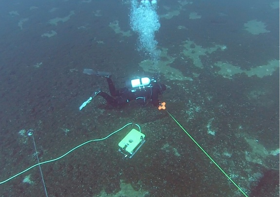 The remains of  9,000-Year-old man-made structures lay at the bottom of Lake Huron, Michigan