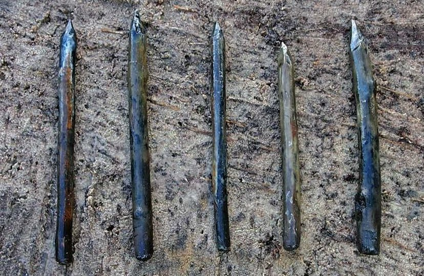 Yew blades discovered in the vicinity of lake Swidwie. Fig. T. Galinski