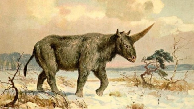 A painting of Elasmotherium sibiricum by Heinrich Harder. Photo Credit: Wikimedia Commons