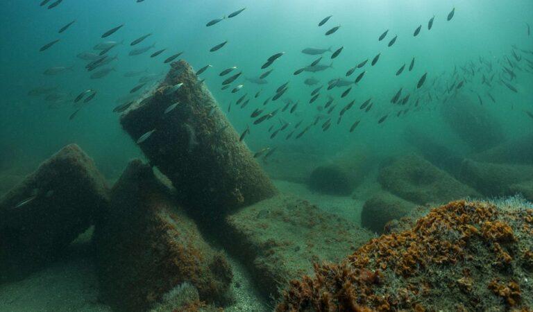 Explore the wonders of Ancient Egypt's Atlantis