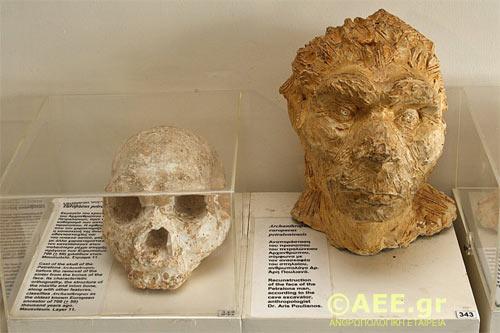 petralona-cave-skull-4_0