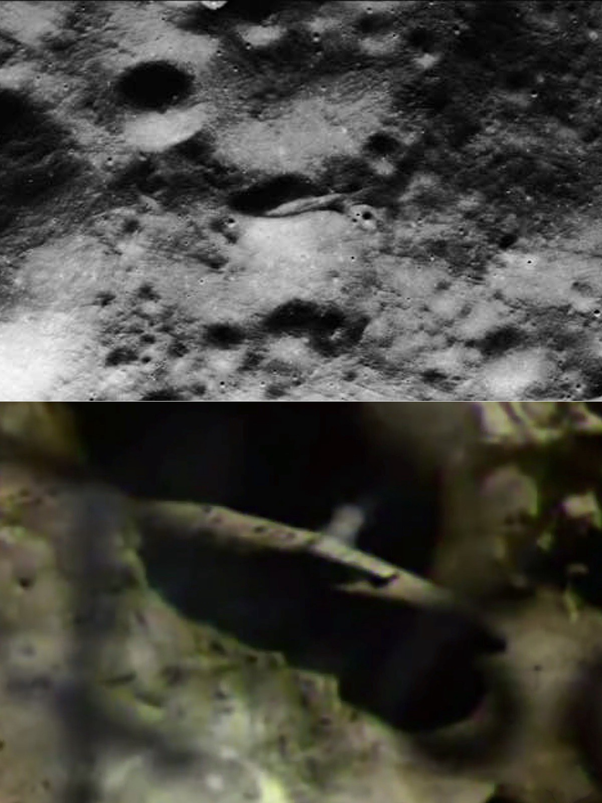 ancient aliens moon landing - photo #10