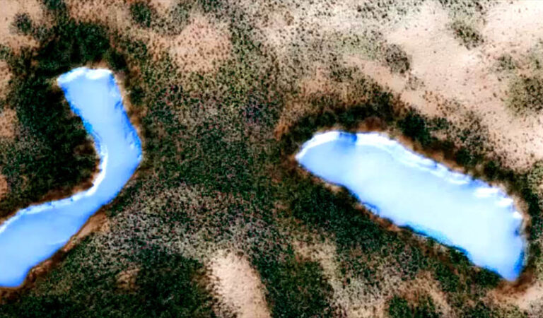 Is this Evidence Of Extensive Vegetation And Lakes On The Surface Of Mars?