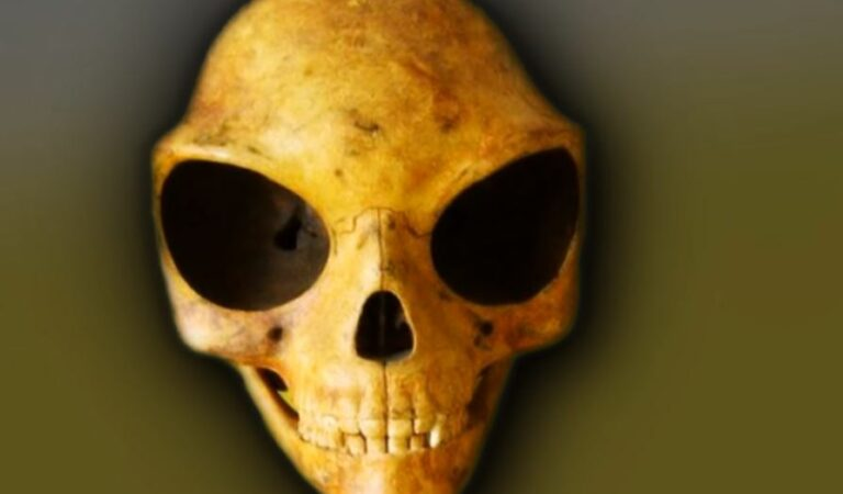 Is this weird Huge-Eyed skull evidence of 'Aliens' visiting Earth?