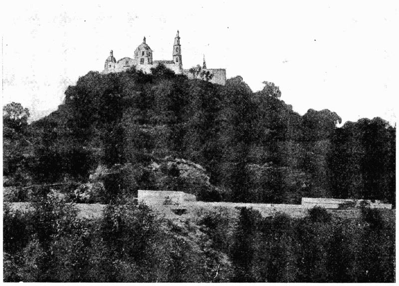 A rare image of the PYramid of Cholula covered in vegetation
