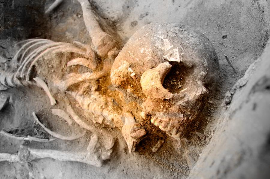 Unknown human ancestor