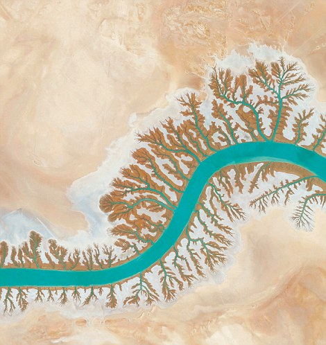Dendritic drainage systems seen around the Shadegan Lagoon in Iran.