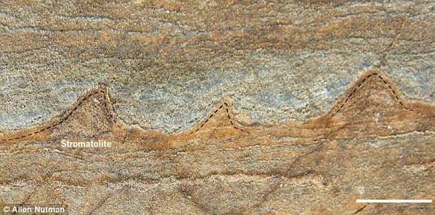 Life on Earth 3,7 billion years