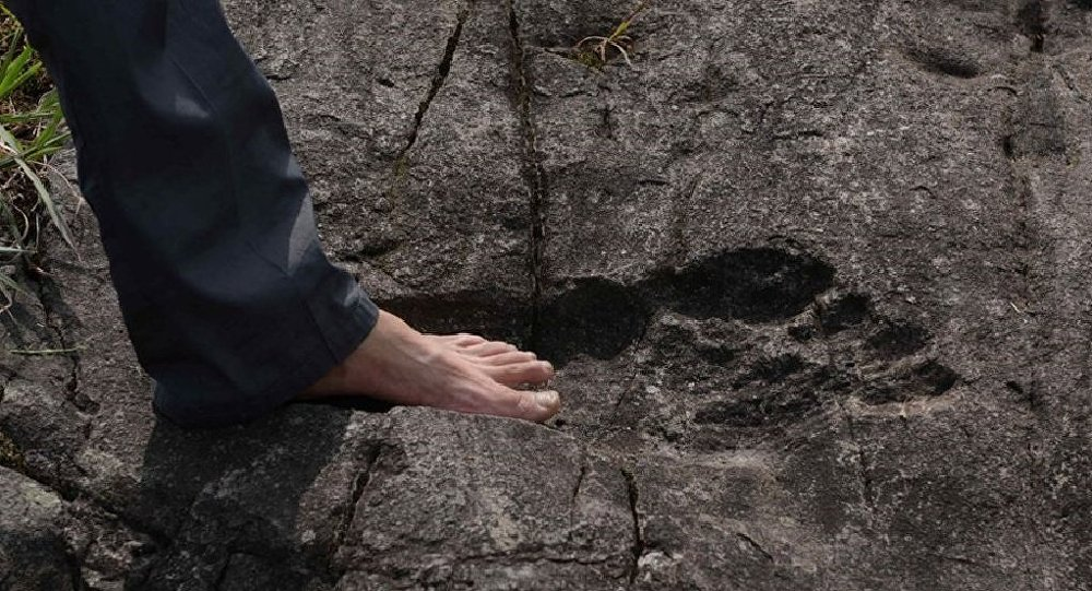 giant-footprint-discovered-in-china