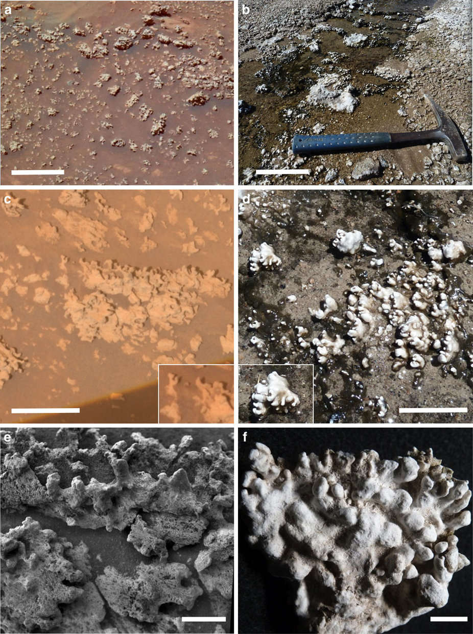 Silica deposits in Gusev Crater (left) compared to those in El Tatio, Chile (right). Ruff/Farmer/Nature
