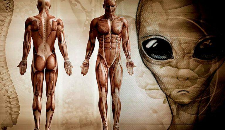 Extraterrestrials Genetically Engineered Homo sapiens 780,000-years-ago