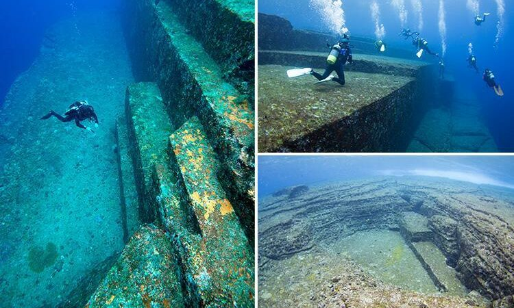 While diving off the coast of Japan, divers never expected to come across this
