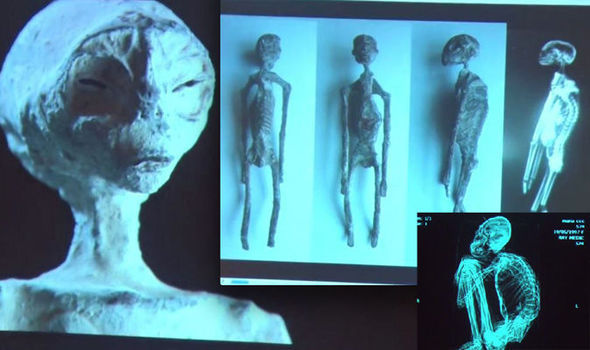 Second Scientist to analyse Nazca Alien mummies says they are real