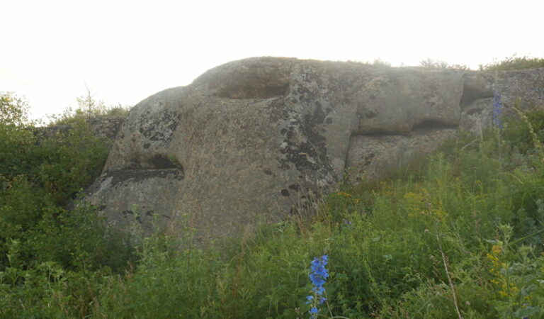 Dragon-shaped granite stones etched thousands of years ago found in Siberia
