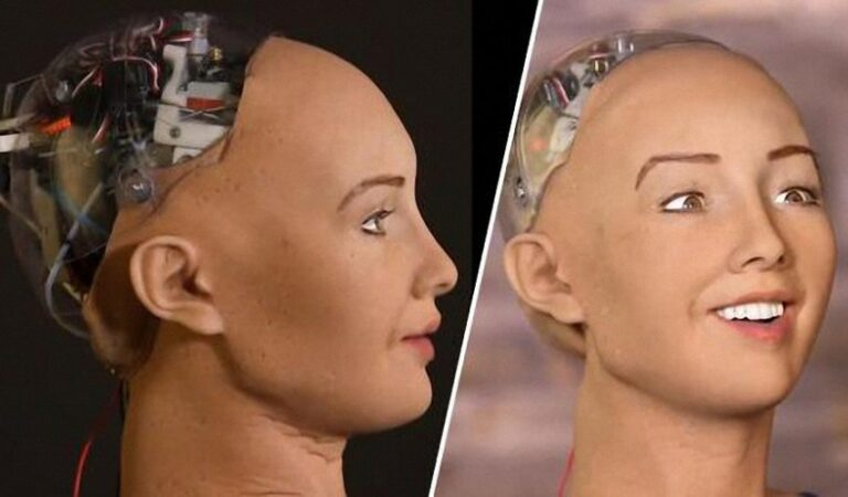 The Future is here: Saudi Arabia grants citizenship to first humanoid robot