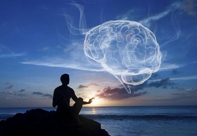 meditación cambia la arquitectura del cerebro