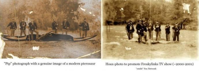 Una imagen real de un pterodáctilo? El misterio detrás de la foto de Dinosaurio de la Guerra Civil
