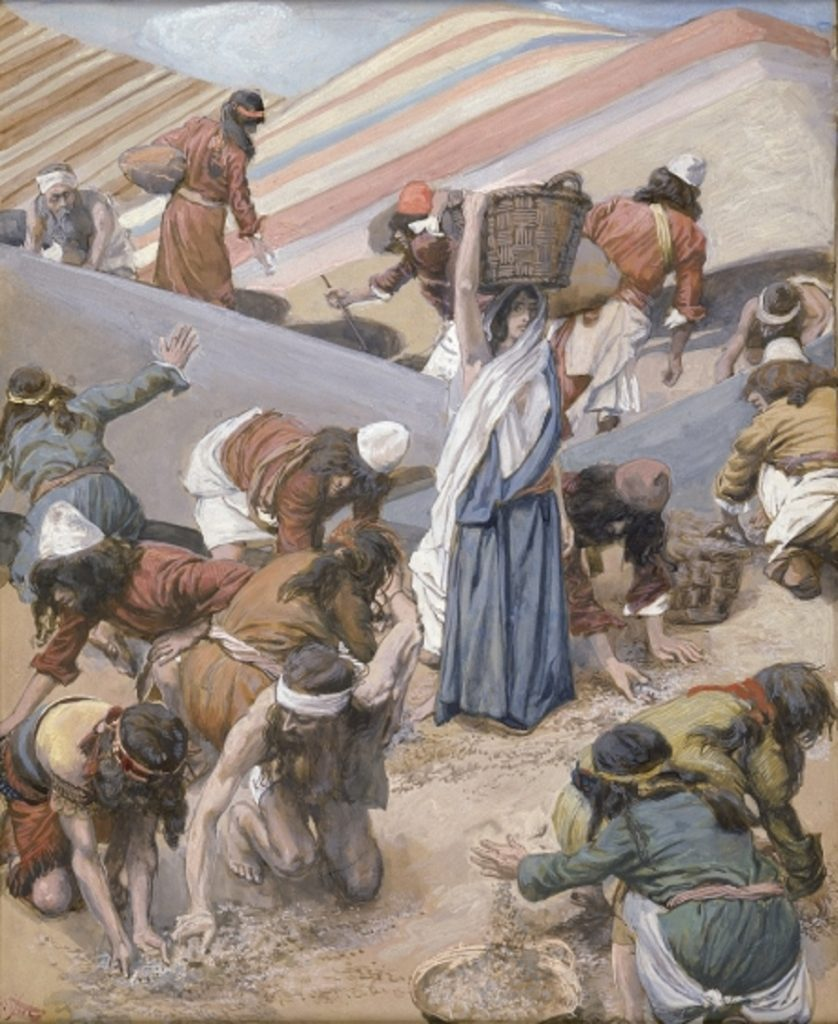 Artists rendering of the gathering of Manna