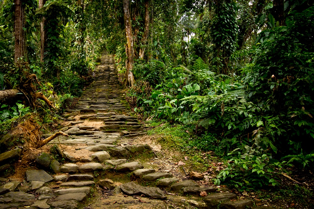 Ciudad Perdida—The Lost City of Colombia, Built 650 Years Before Machu Picchu Stone_Stairway_to_Ciudad_Perdida