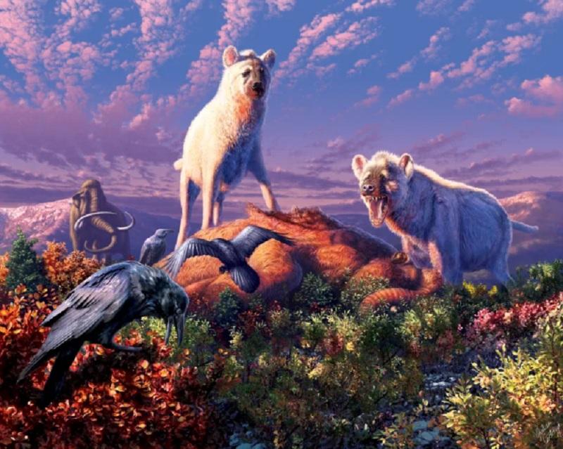 Arctic hyenas of the genus Chasmaporthetes