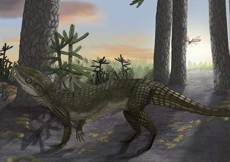 Pakasuchus was a small crocodile