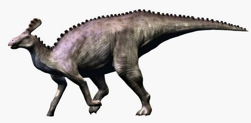 We have much to learn about hadrosaurs